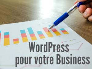 wordpress pour votre business